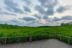 Природа неба стоковая фотография rf