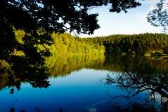 природа озера предпосылки сценарная Стоковые Изображения RF