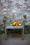 природа осени голубая длинняя затеняет небо Плодоовощ падения на древесине благодарение овощи осени на старом стуле в саде стоковые изображения