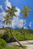 природа острова тропическая Стоковые Изображения RF