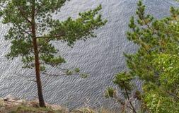 Природа острова Valaam Стоковое Изображение