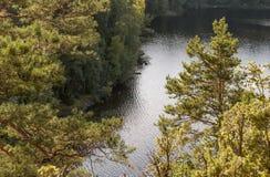Природа острова Valaam Стоковые Изображения