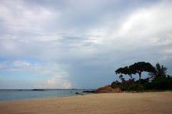 природа пляжа тропическая Стоковое Изображение