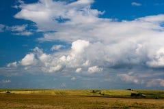 природа поля более обширная Стоковые Изображения