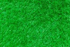 Природа предпосылки травы Стоковое Изображение RF