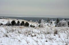 Природа Сибирь зимы стоковая фотография