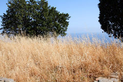 природа Сицилия Стоковая Фотография