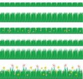 природа травы элементов Стоковое фото RF
