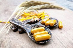 Природа фитотерапии/естественный турмерин выдержки для капсул желтого цвета медицины травы на деревянной ложке стоковые фото