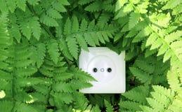 природа энергии зеленая Стоковые Изображения