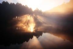 природа 2 зеркал Стоковые Изображения