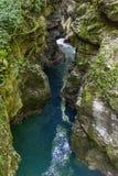Природа Georgia, каньон Martvili, может 2017 стоковое изображение rf