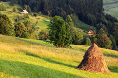 природа haystack Стоковая Фотография