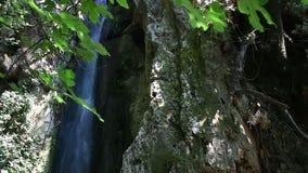 Природа Parga водопада Anthousa сток-видео
