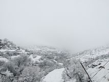 Природа Snowy в Курдистане стоковая фотография rf