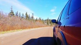 Природа автомобиля Стоковые Фото