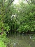 Природа Айовы Стоковые Фото