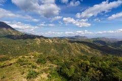 Природа ландшафта зеленой травы Стоковая Фотография