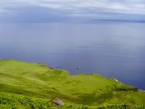 Природа береговой линии Шотландии стоковая фотография rf