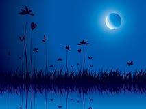 природа вечера Стоковая Фотография RF