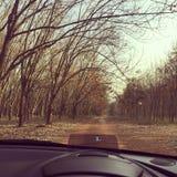 Природа вне автомобиля Стоковые Фото
