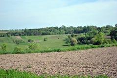 Природа в деревне Украина стоковое фото rf