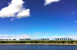 Природа в линиях Стоковая Фотография RF