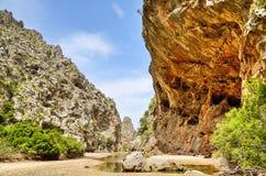 Природа в Мальорке Стоковые Фотографии RF