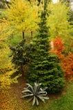 Природа в осени Стоковое Изображение RF