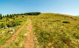 Природа в Сербии Stara Planina стоковые фото