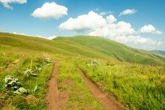 Природа в Сербии Stara Planina Стоковая Фотография RF