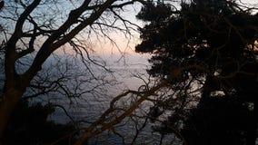 Природа в лучшем случае стоковая фотография rf