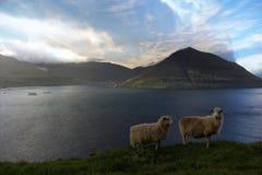 Природа в Фарерских островах Стоковые Фотографии RF