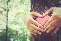Природа влюбленности Стоковые Фото