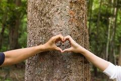 Природа влюбленности Стоковая Фотография RF