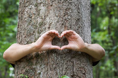 Природа влюбленности Стоковые Изображения
