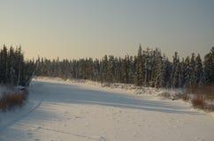 Природа в Hanty-Mansiysk Okrug Стоковое Изображение