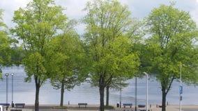 Природа города Стоковые Изображения RF