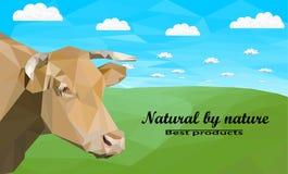 природа горы лужка ландшафта коровы принципиальной схемы Стоковая Фотография RF