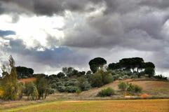 природа гор ландшафта almeria andalusia cabo de пустыни gata столетника естественная около испанского языка завода парка Стоковая Фотография RF