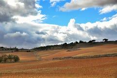 природа гор ландшафта almeria andalusia cabo de пустыни gata столетника естественная около испанского языка завода парка Стоковые Изображения RF