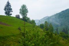Природа лета с холмом, деревьями и туманом Стоковые Фотографии RF
