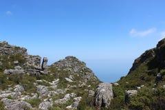 Природа, заводы, кустарники, утесы na górze национального парка горы таблицы, перемещения Кейптауна Южной Африки Стоковые Изображения RF