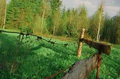 Природа загородки поля колючая Стоковые Изображения RF