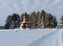 Природа зимы деревни Украины Стоковое Фото