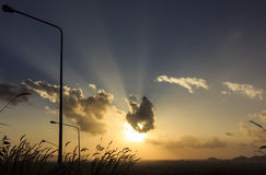 Природа и солнце Стоковые Изображения RF