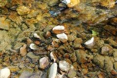 Природа Камни, река, вода, подача Стоковая Фотография