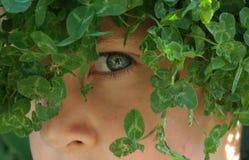 природа мальчика Стоковая Фотография