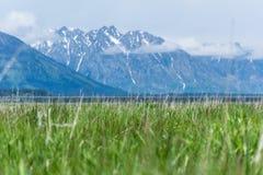 Природа на грандиозном национальном парке teton Стоковая Фотография