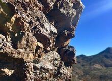 Природа Невады Стоковая Фотография RF